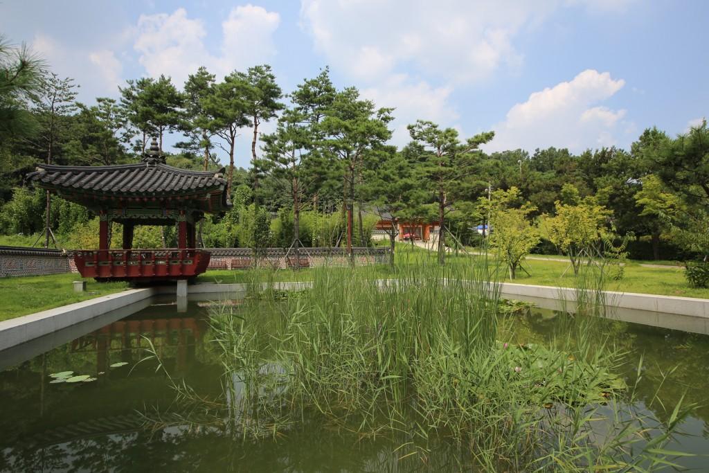 풀이 자란 연못
