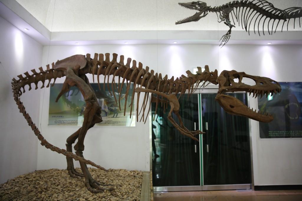 곤충,공룡전시관