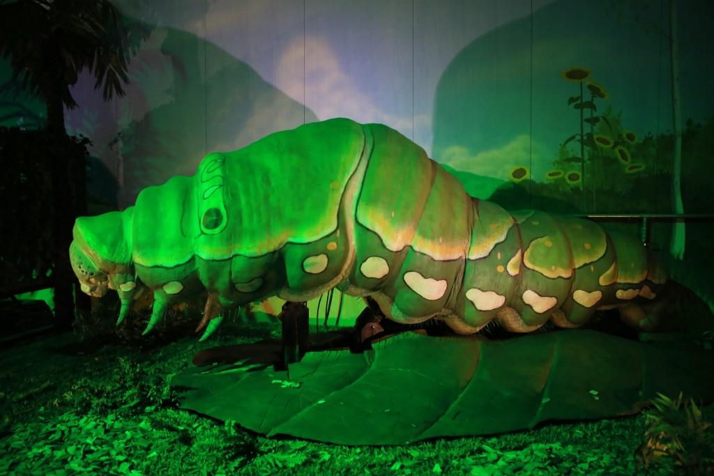 조명등 아래 대형 애벌레