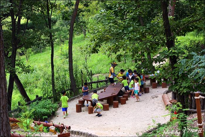 어린이 숲 체험 프로그램을 하고 있는 아이들
