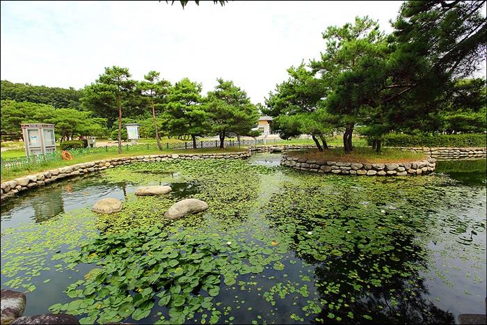 넓은 연못의 모습