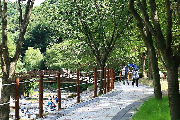용문산 산책길