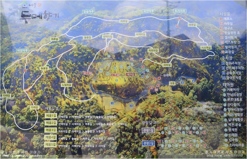 산나물 두메향기 지도