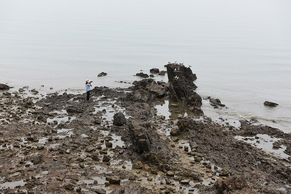 해안에서 사진을 찍는 사람