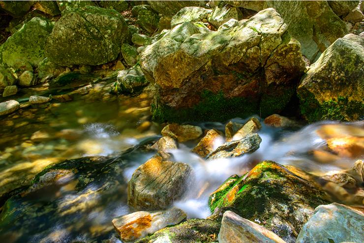 시원하게 흐르는 계곡물
