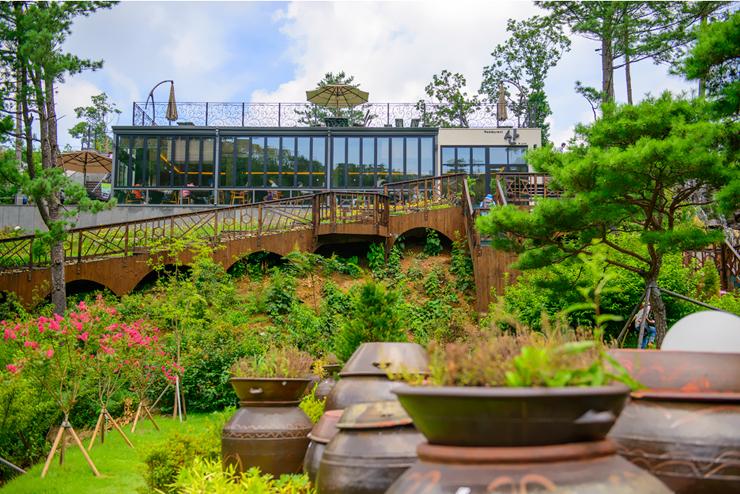 각종 허브식물들이 가득한 정원