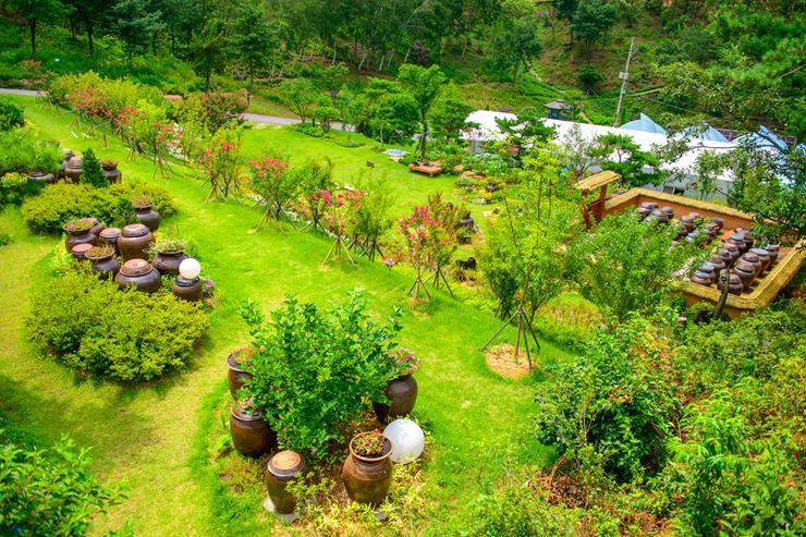 두메향기 정원
