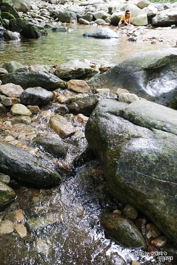 물고기가 훤히 보일만큼 깨끗한 계곡물