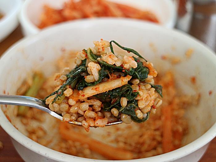 보리밥 한숟가락