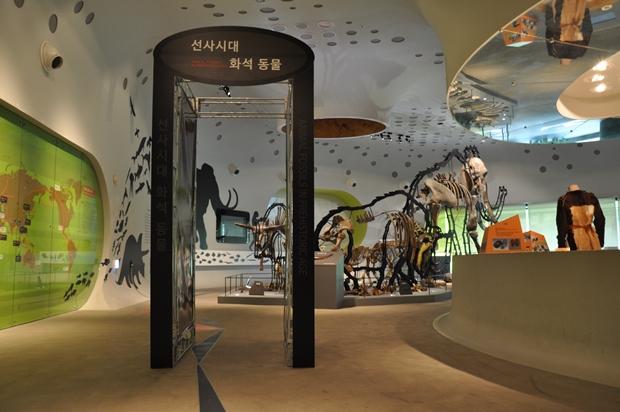 선사시대 화석동물 전시실