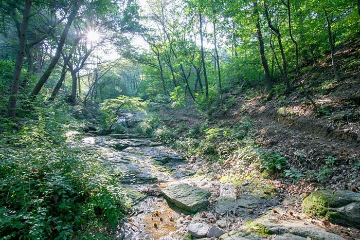 산들소리수목원 015