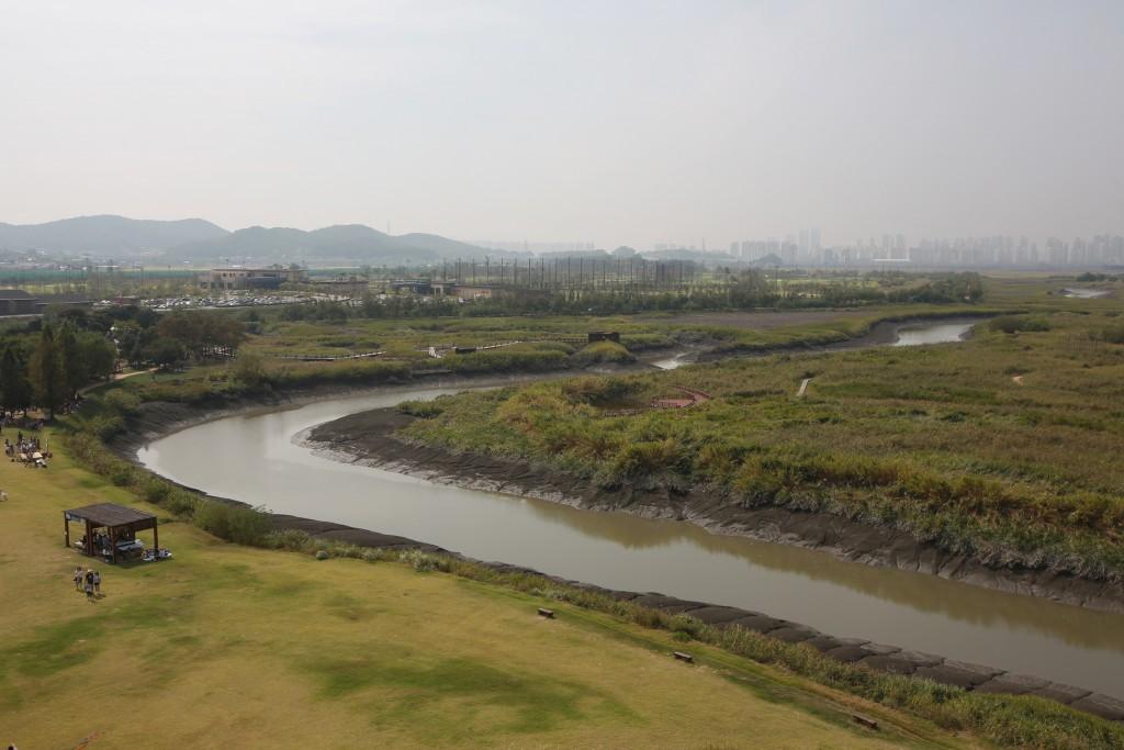 시흥갯골 139