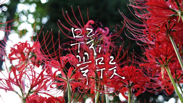 경기도 성남 추천여행 – 마음속의 경기도 129. 신구대식물원