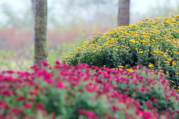 다산생태공원 012