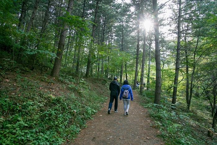 서후리숲 002