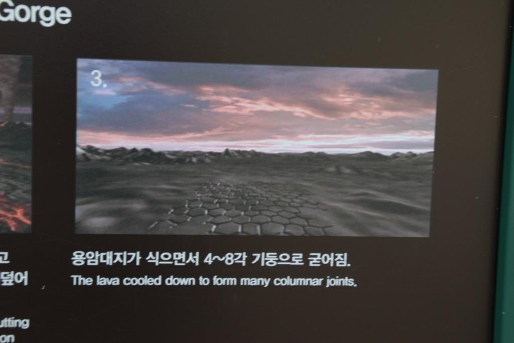 어메이징파크,비둘기낭,평깅식물원이동갈비 182