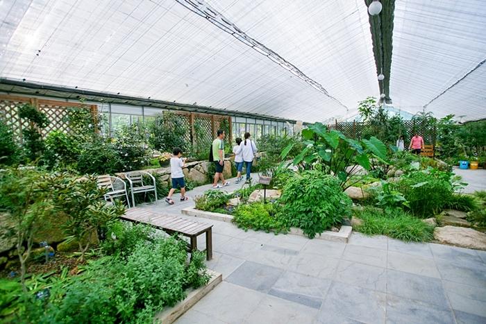 평강식물원 022