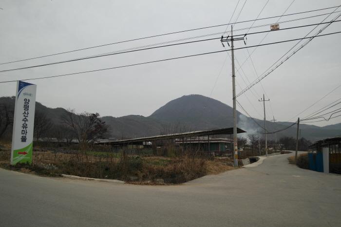 양평 산수유마을