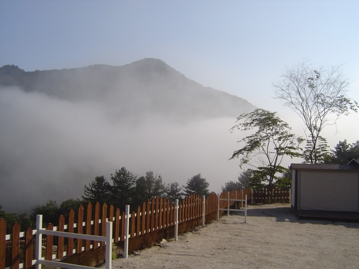 솔다람숲힐링파크