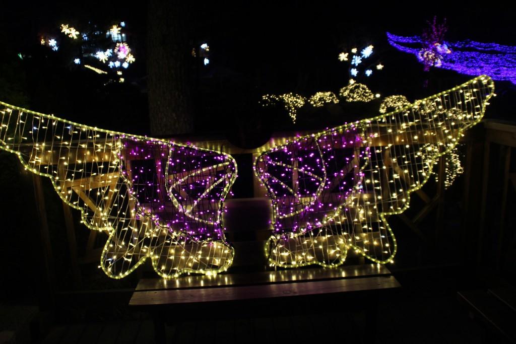 여운영생가,닥터박,예쁜아줌마,두메향기불빛축제 189