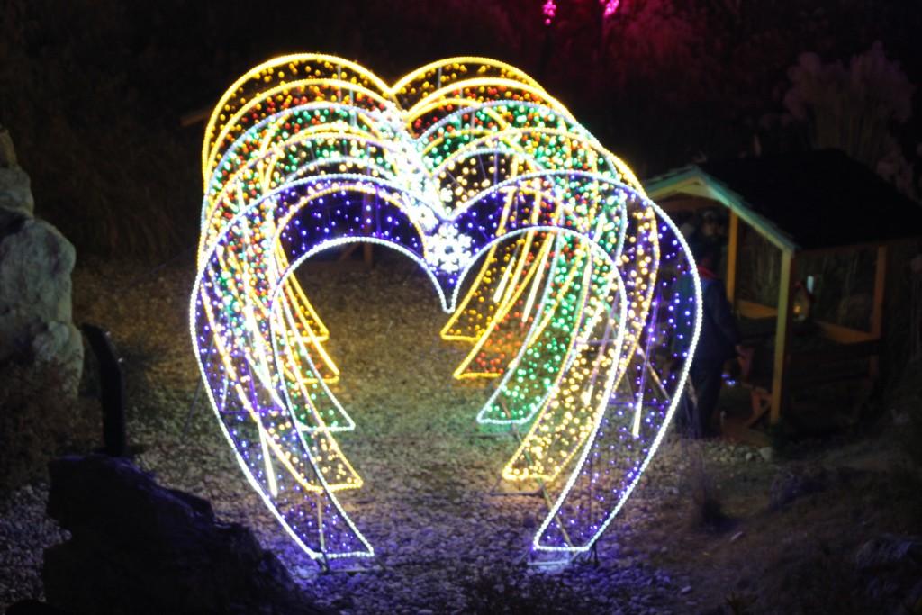 여운영생가,닥터박,예쁜아줌마,두메향기불빛축제 194