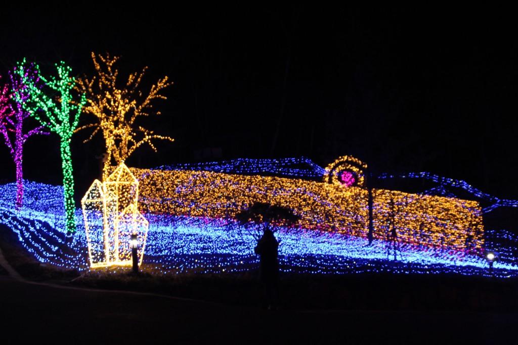여운영생가,닥터박,예쁜아줌마,두메향기불빛축제 228
