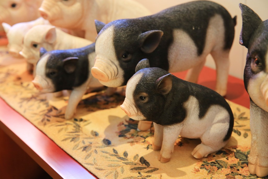 돼지모양의 기념품