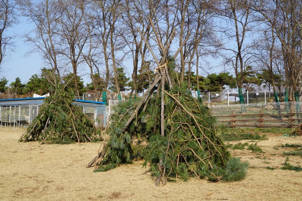 나무로 직접잘라 만든 집