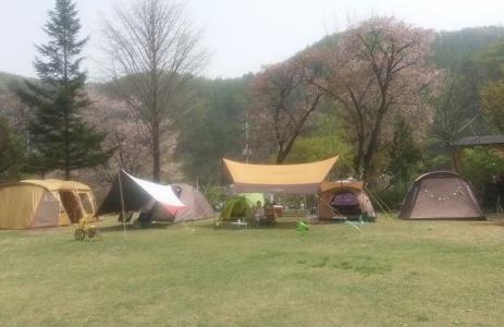 산음숲자연학교(참사람생태예술치유센터)