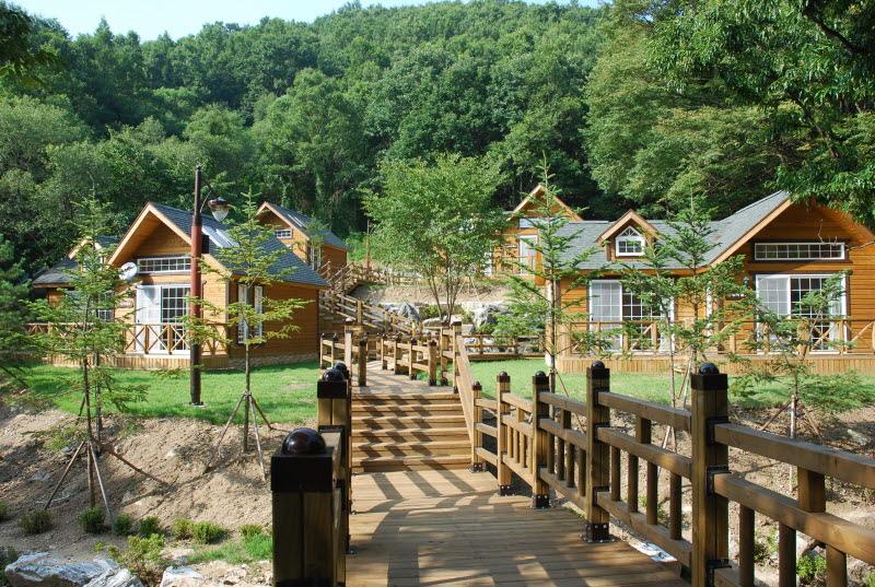 용인 자연휴양림 야영장