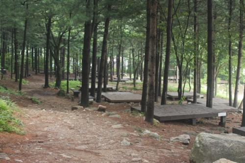 유명산자연휴양림(일반)