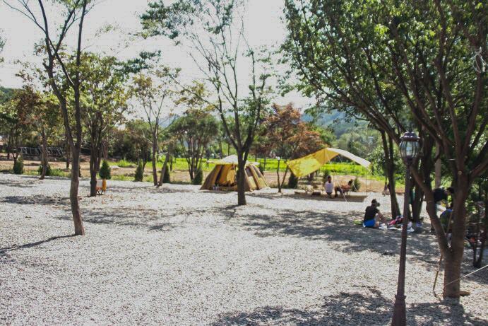 캠프 예그리나