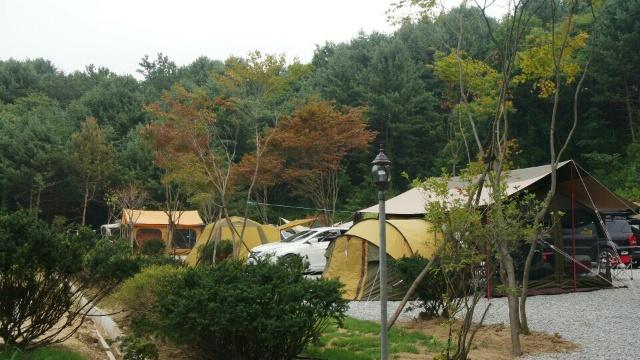 녹천농원캠핑펜션1