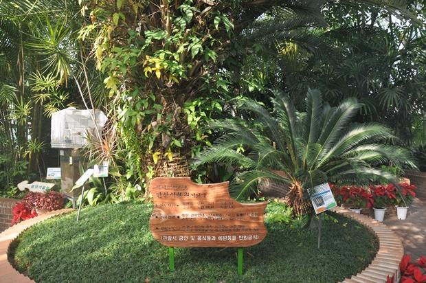 식물원 내부모습
