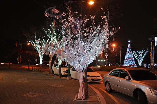 소원을 적은 흰색 조명나무