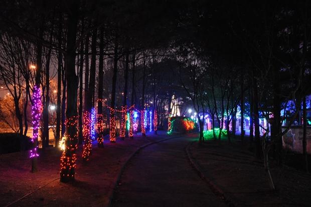 광장 앞 화려한 색의 나무조명들