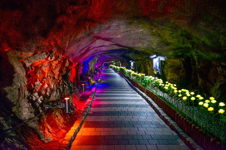 동굴과 조명의 조화