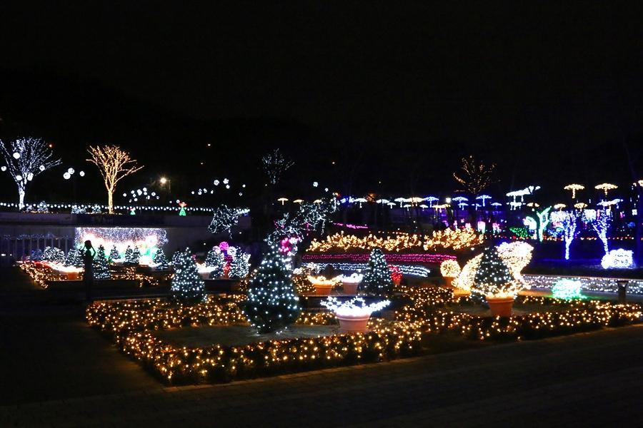 입구 앞에서 본 불빛축제
