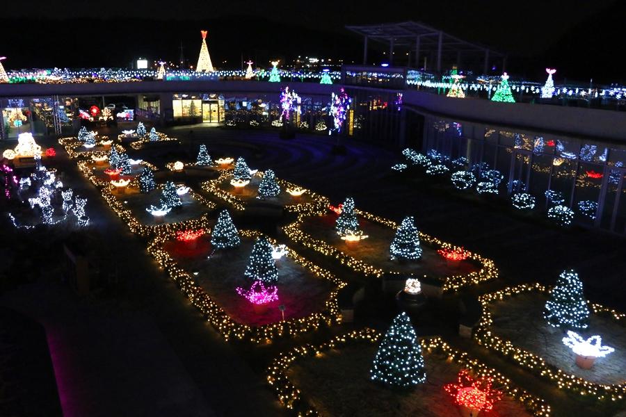 식물원 불빛축제 모습