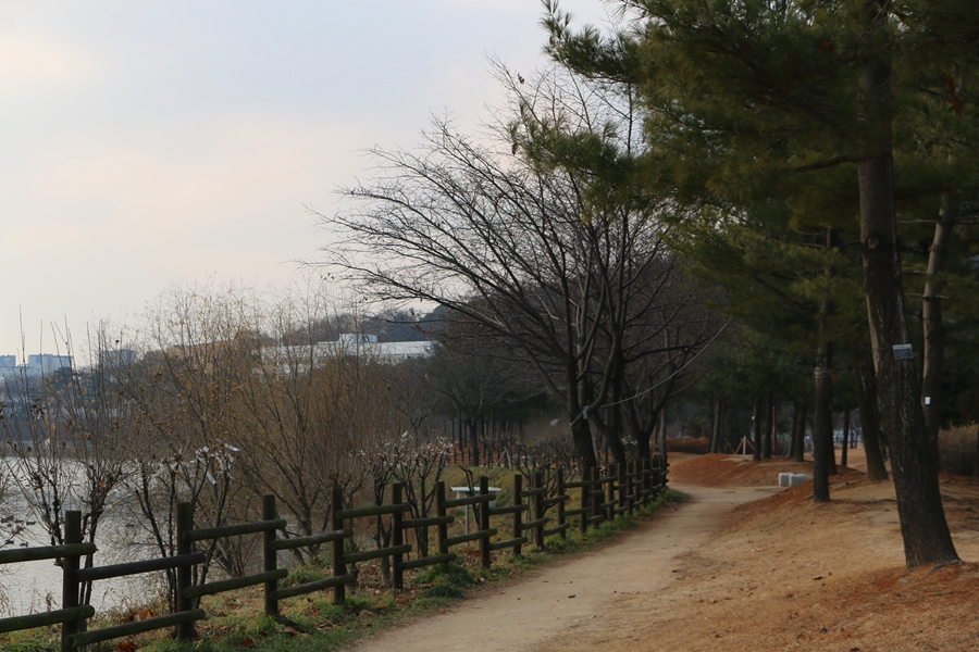 서호공원 산책길