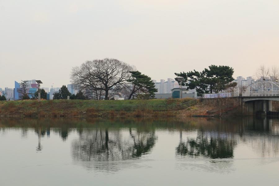 서호공원의 풍경