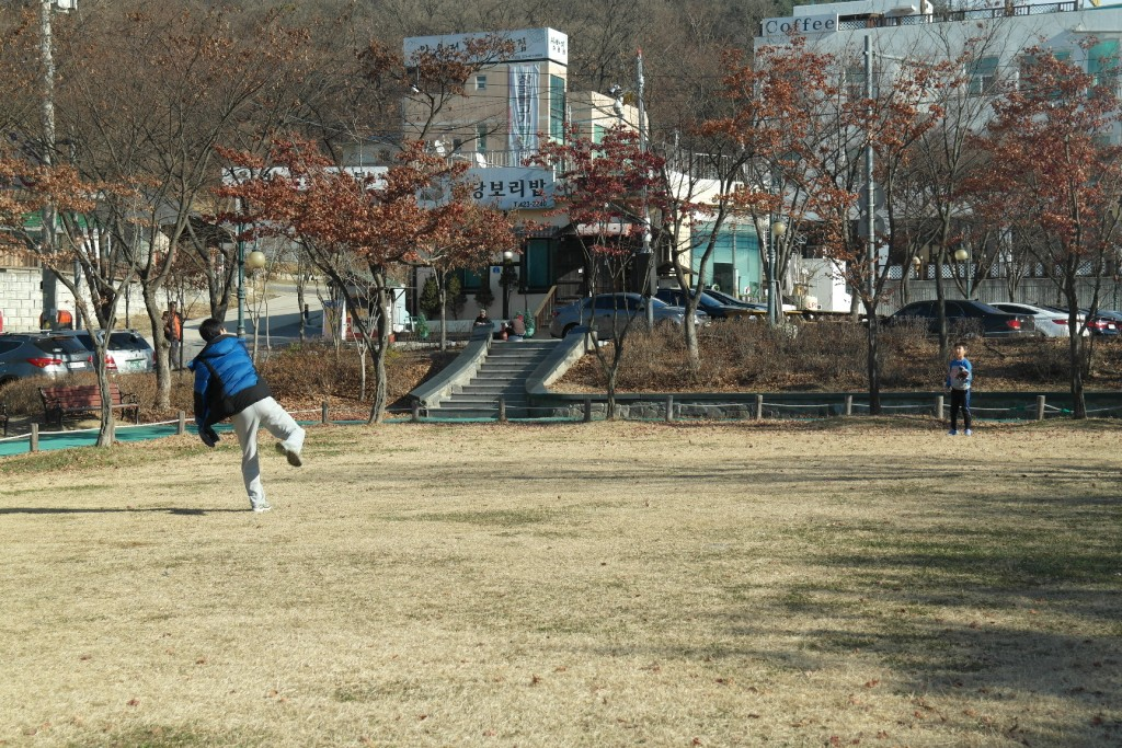 공원에서 야구를 즐기는 부자