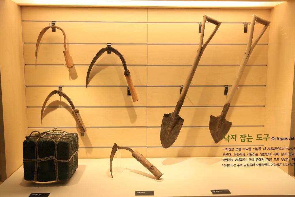 낙지잡는 도구들