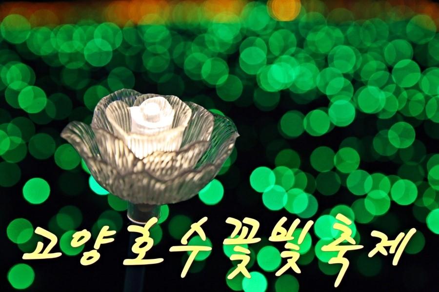 고양호수꽃빛축제