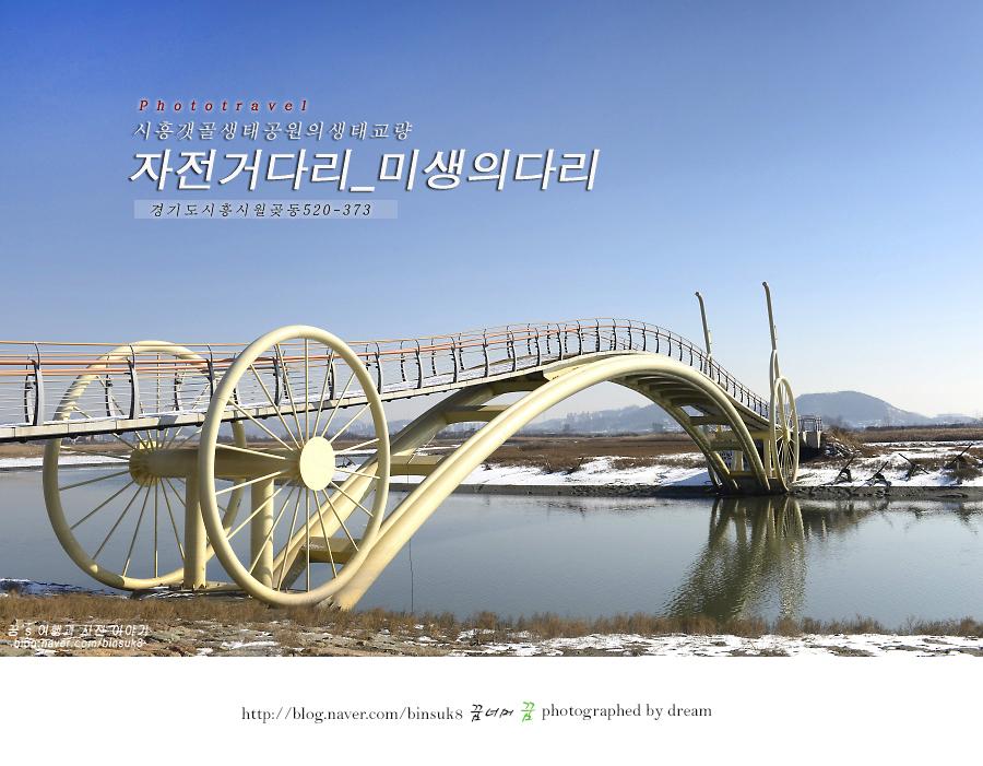 경기도 시흥시 자전거다리(미생의다리)