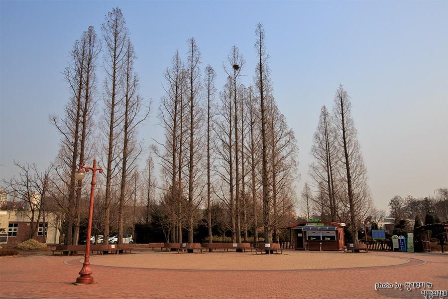 오산 물향기 수목원 풍경