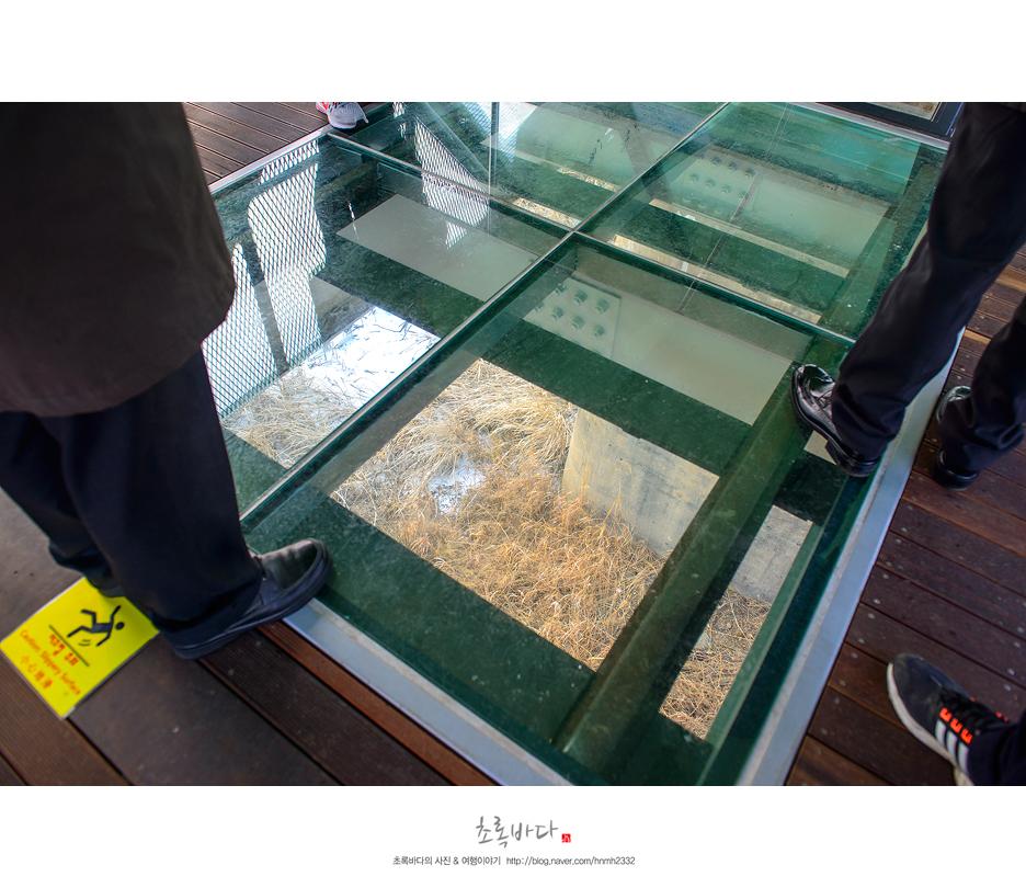 독개다리에 투명한 다리