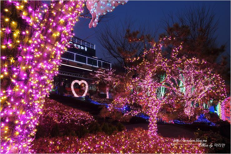 별빛 분홍정원