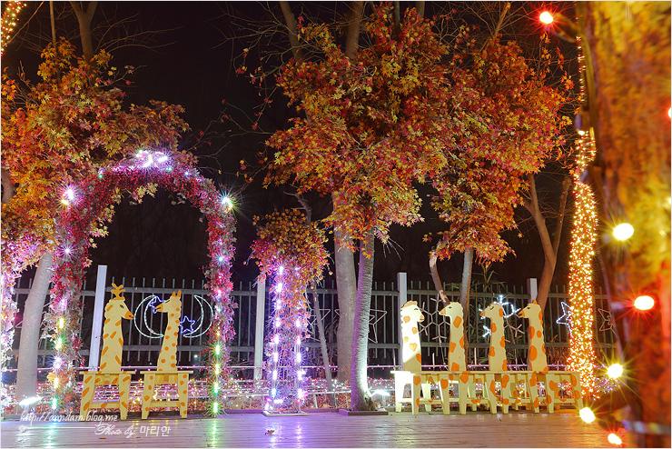 가을나무와 기린 벤치들