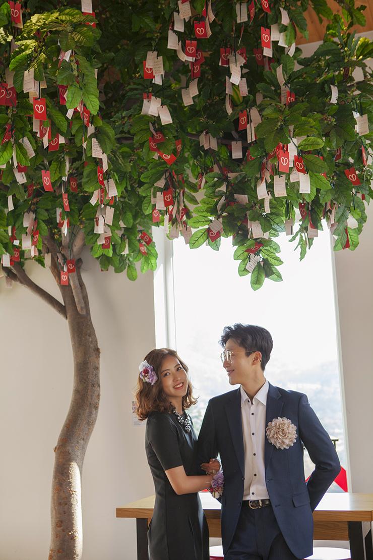 소원 나무 밑에서 선 신랑 신부